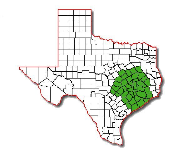 texas-home-inspector-counties-served